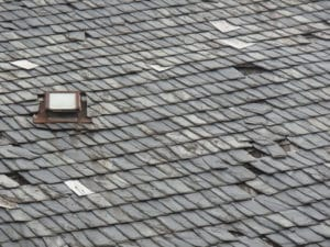 The rainy season is upon us and unexpected roof leaks are happening all over Sonoma & Marin County. At ARS Roofing, we're no stranger to unexpected leaks and our clients & customers know they can call on us 24/7, no matter the weather, we'll be there.  The unfortunate truth about roof leaks is that homeowners normally discover they have a problem at the worst possible time, like when water starts pouring into their living room or mold begins creeping up their wall. The silver lining in discovering a leak is that it's actually easier for the professionals to trace the source of your leak when the water is actually breaching your home. Roofing is more complex than most people believe it to be. It's rarely the case that where a leak appears in your home directly correlates to where the source is on your roof, which is why it's best not to delay calling in the experts. We serve our clients with 24/7 roof repair because we know you're going to find out you have a leak at the most inconvenient time and we want to make sure we can service your home as quickly as possible to minimize the damage as much as we can.  Here in Sonoma & Marin County, we tend to see the a few common causes for the roof leaks we repair. Often leaks are the result of an aging roof, but, that's not always the case. Sometimes leaks are the result of damage to a specific portion of a roof that would otherwise be in perfect working order. Damage can occur for a variety of reasons, but locally, if it's not the age of the roof, it tends to be moss or moisture rot, pest infestation, or weather related trauma.  In our area we're lucky to have a prevalence of beautiful, mature trees. While the trees are great for curb appeal, they also means some residents have a tree on their property or neighboring property that casts shade on all or part of their roof. While that's great for beating the heat of hot summer weather, it can also mean that moisture may linger on cooler days, leading to issues like moss growth and mold which can weaken your roof and lift your shingles – leading to a leak when it rains. Some of our clients are surprised to learn that pest infestations; such as termites, can cause a leak in their roof. Most often people think of pests as being more internal, like the walls or crawlspace of a home. But, don't be fooled, some pests prefer the climate of your attic where they can wreak havoc undisturbed, which given the right circumstance can lead to vulnerability in your roofing that you won't notice until you've got a leak. While we obviously don't treat pests, we can repair & seal your roof which prevents further exposure and allows your pest control professional to treat your infestation more effectively. Sonoma & Marin County residents, aren't subjected to the same harsh winter weather like our East Coast counterparts deal with. But, we do get our fair share of very powerful wind gusts which sway trees back and forth and sometimes cause a branch to break free and land on our dwellings. Most people know right away when their roof has suffered a physical blow, but that's not always the case.  No matter the cause for your leaky roof, we're here to help you fix it fast. Contact ARS Roofing as soon as you notice a leak and we'll be there to repair & seal your roof quickly and effectively.